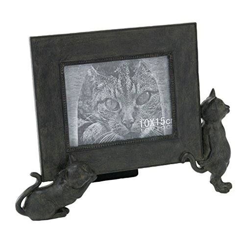 Time Concept Polyresin Liberty Cat Carrying Photo Frame - Antique Style Finish, Home Décor