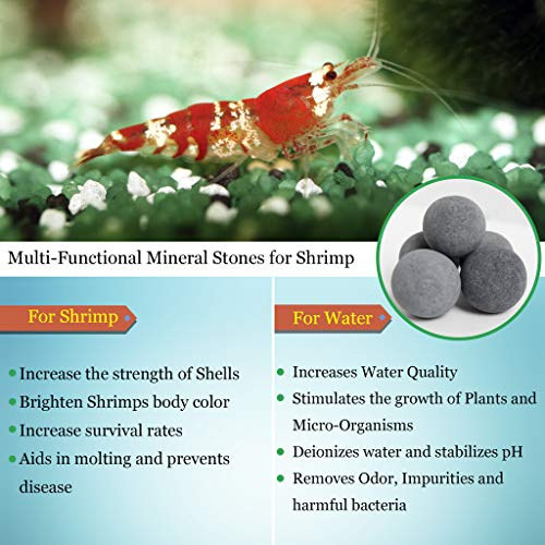 Image of 10 Pcs. Mineral Beads for Shrimps - 0.4