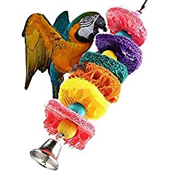 Nattel Pet Bird - Funny Bird Toys Wooden Hanging Hammock Budgie Cockatiel Swing Pet Birds Climb Chewing - Live Products Volken Box Jacket Items Seed Hoop Accessories Magazines