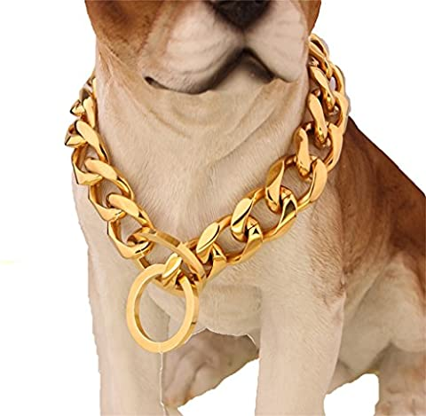 Custom Ultra Strong 19MM Slip Chain Dog Collar - For Pit Bull Mastiff Bulldog Big Breeds (Gold Chain For Dog)