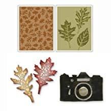 Sizzix 30311 Fall 5-Piece Die Cuts Value Kit for Scrapbooking Design by Tim Holtz, Includes Bigz Die Vintage Camera and Embossing Folders
