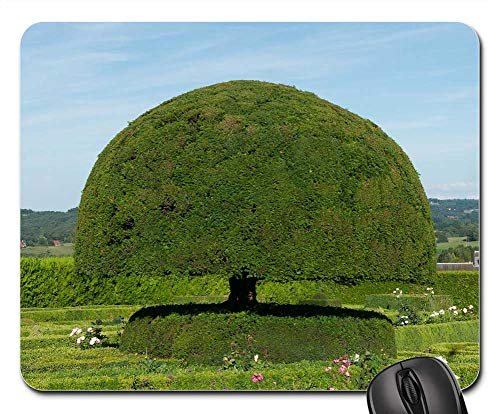 Mouse Pad - Topiary Yew Tree Landscape Scenic Summer Spring