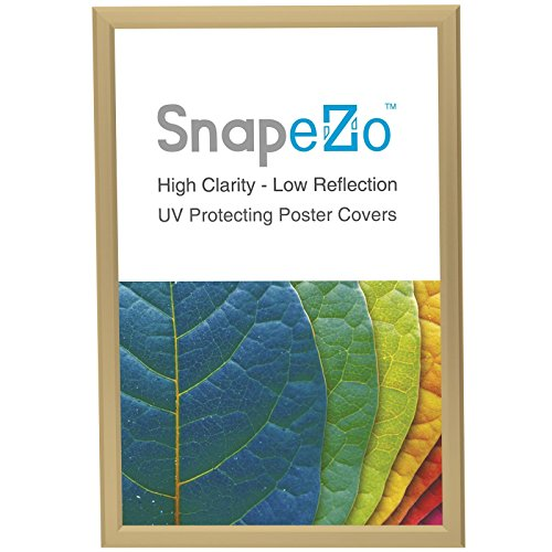 gold snap frame inches