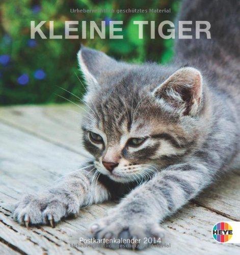 Katzen. Kleine Tiger 2014. Postkartenkalender