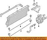 Ford BC3Z-8597-A, Radiator Coolant Hose