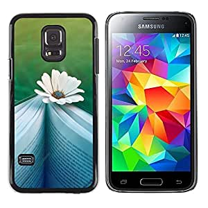 LECELL--Funda protectora / Cubierta / Piel For Samsung Galaxy S5 Mini, SM-G800, NOT S5 REGULAR! -- Daisy Book Reading Teal Memory Novel --