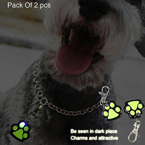Pack Paw Shape Lights Safety Reflective