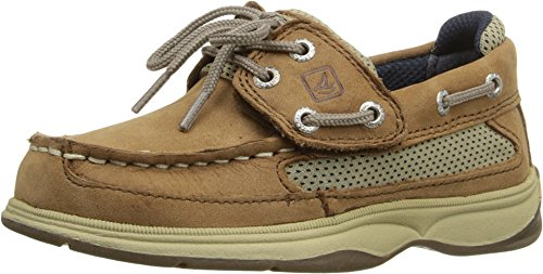 SPERRY Kids Baby Boy's Lanyard A/C (Toddler/Little Kid) Dark Tan/Navy 12 M US Little Kid (Sperry Top Sider Boys Billfish Boat Shoes)