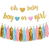 Gender Reveal Party Decorations - Glitter Letters OH BABY and BOY OR GIRL With Hearts Banner, Tissue Paper Tassels Garland Set for Baby Shower Party Decorations