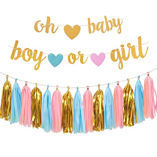 Gender Reveal Party Decorations - Glitter Letters OH BABY and BOY OR GIRL With Hearts Banner, Tissue Paper Tassels Garland Set for Baby Shower Party Decorations]()