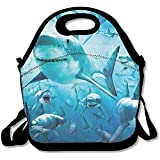 Best Picnic Plus Lunch Boxes - HOOAL Shark Travel Picnic Lunch Bag Lunchboxes Outdoor Review