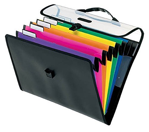 Pendaflex Desk Free Hanging Organizer with Case, Letter Size, Black with Bright Colors (52891) (2-Pack)