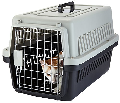 Yvettevans Portable Airline Approved Pet Kennel Cats Travel Cage Car Travel Vet Visit Dogs Carrier Crate Outdoor Kennel (M)