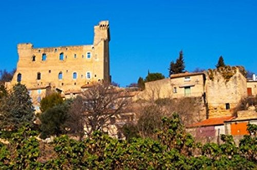 Ruins of the Popes Summer Castle in Chateauneuf-du-Pape Poster Print by Per Karlsson (26 x 18)