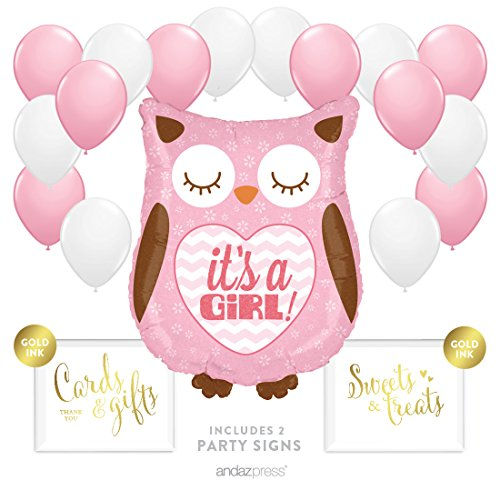 Andaz Press Balloon Party Kit with Signs, Girl Baby Shower, Owl with Pink and White Balloons, Hanging Decor, Hanging Decorations, 19-Piece Kit ()