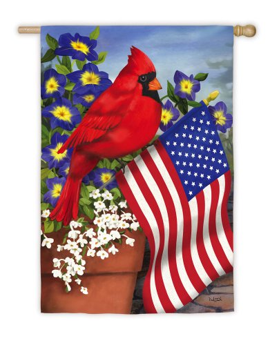 Evergreen Suede Cardinal Glory House Flag, 29 x 43 inches