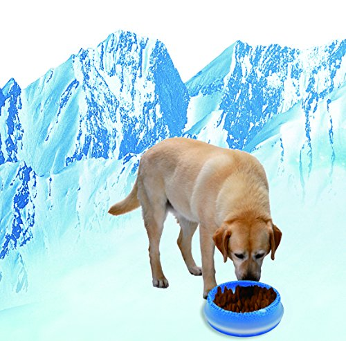 Chilled Dog Bowl Dog Water Cool Bowl Frosty Bowl 16 Ounces Dog food Bowl In Summer Cooling Food and Water for 8 hrs Perfect for The Pet in Hot Summer Pet Comfortable to Eat Blue