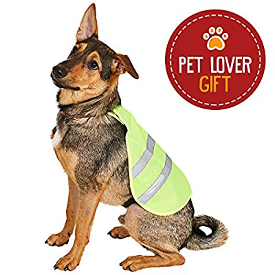 Animals Favorite Dog Reflective Vest, Outdoor Activity, High Visibility Protection