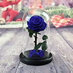 Real-Rose-86H-Beauty-and-The-Beast-Enchanted-Rose-Preserved-Fresh-Rose-in-Glass-Dome-Romantic-Forever-Gift-for-Her-Anniversary-Valentines-Day-Christmas-Mothers-Day-Blue-86H
