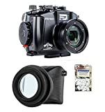 Fantasea FRX100 V Housing for Sony RX100 III/IV/V w/UMG-02 LCD Magnifier & Moisture Absorbers
