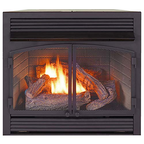 ProCom Heating Dual Fuel Ventless Fireplace Insert - 32,000 BTU, Remote Control, FBNSD400RT-ZC