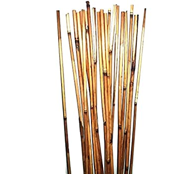 Amazon Com Natural Thin Bamboo Stakes Over 5 Feet Tall