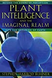 Plant Intelligence and the Imaginal Realm, Stephen Harrod Buhner, 1591431352