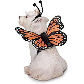 Zack & Zoey Butterfly Glow Harness Costume for Dogs, X-Large
