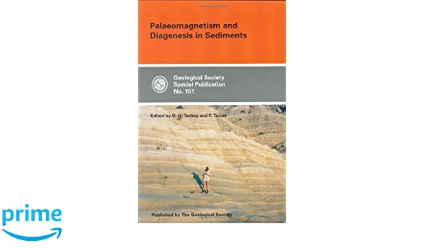 Palaeomagnetism and diagenesis in sediments