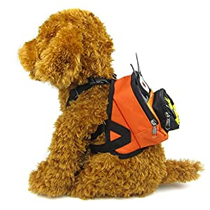 Alfie Pet by Petoga Couture - Oliga Backpack Harness with Leash Set - Pattern: Batman, Size: Small