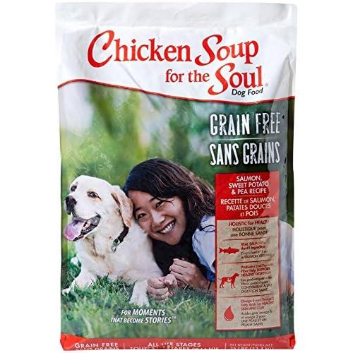 hot sale Chicken Soup for the Soul Grain Free - Salmon & Sweet Potato - Dog 25lb