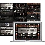 IK Multimedia AmbliTube MESA Boogie for Windows and