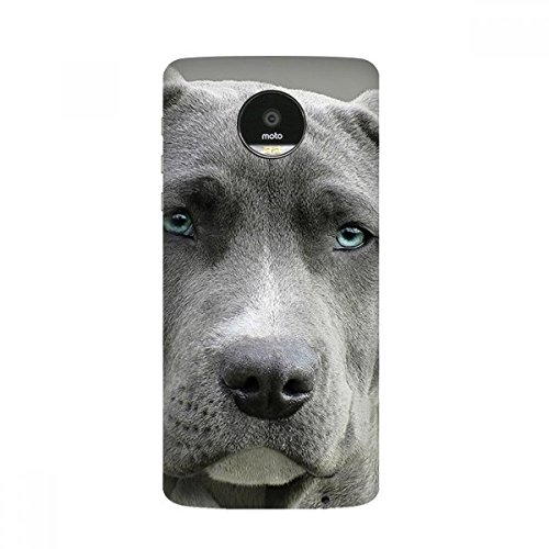 Handsome Dog Pet Animal Picture Moto Z / Z Force / Z2 Magnetic Mods Custom-made Phonecase DIY Moto Style Shell
