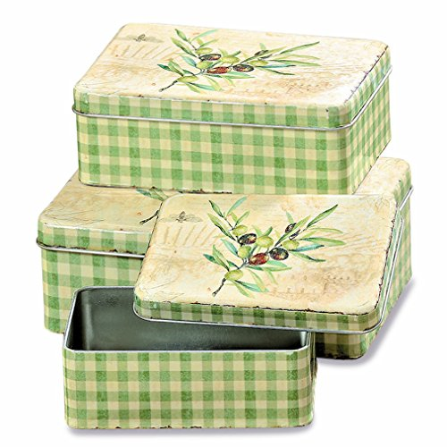 WHW Whole House Worlds Italian Garden Olive Branch Cookie Tins, Set of 3 Boxes with Lids, Distressed Details, Pale Green Gingham Pattern, Tin Plate, Rustic Vintage Style, Various ()