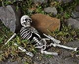 The Fiddlehead Fairy Garden Skeletal Remains Miniature Garden Accessory #16493