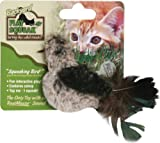 Play-N-Squeak Backyard Bird Cat Toy, My Pet Supplies