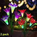 Solar Garden Stake Lights?LED Solar String Lights Outdoor, 2 Pack Multi-color Changing Solar Powered Lights with 8 Lily Flowers Decorative Lawn Landscape Lamp for Patio, Yard, Garden(White and Purple)