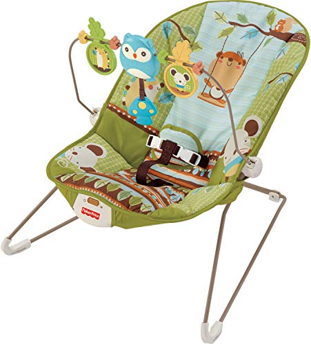 Buy Cheap Fisher-Price Forest Fun Bouncer, Green Grove