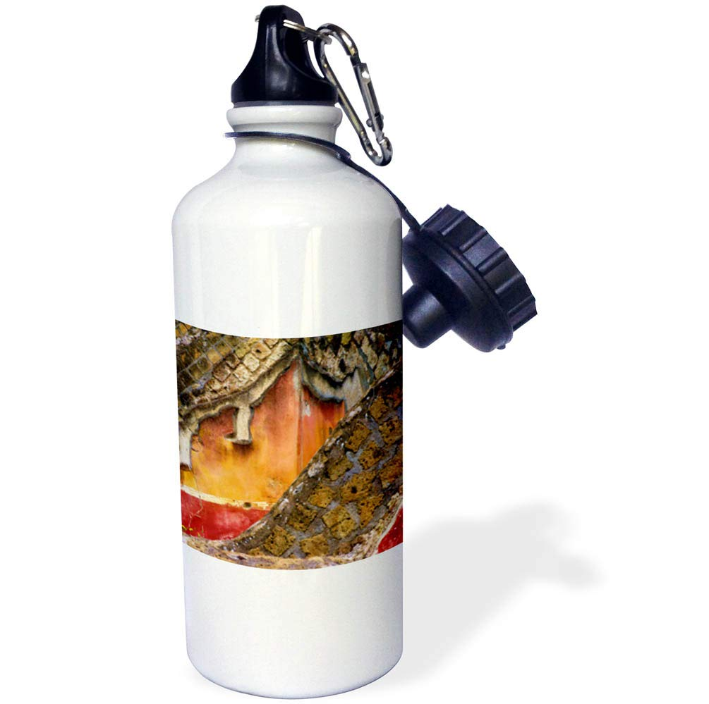 3dRose Elysium Photography - Macro - Painted walls, Pompeii, Italy - 21 oz Sports Water Bottle (wb_289635_1)