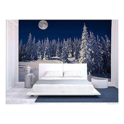 Dazzling Artisanship, Quality Artwork, Beautiful Winter Landscape in the Mountains at Night with Stars and Moon