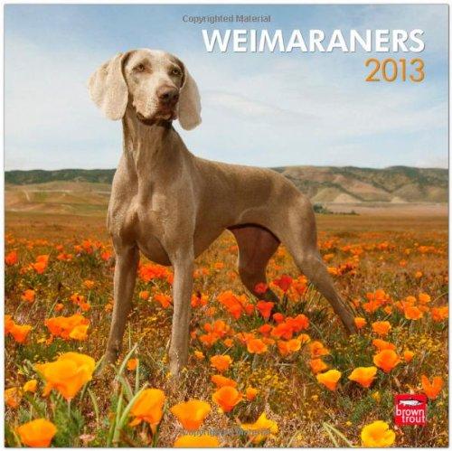 Weimaraners 2013 Square 12X12 Wall Calendar (Multilingual Edition) pdf