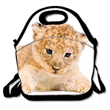 Washable Lunch Tote Lion Cub Lunch Box Insulation Board for Men