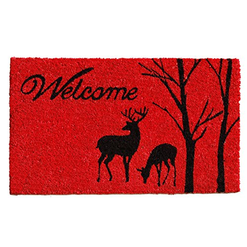 Home & More 121411729 Winter Welcome Doormat, 17