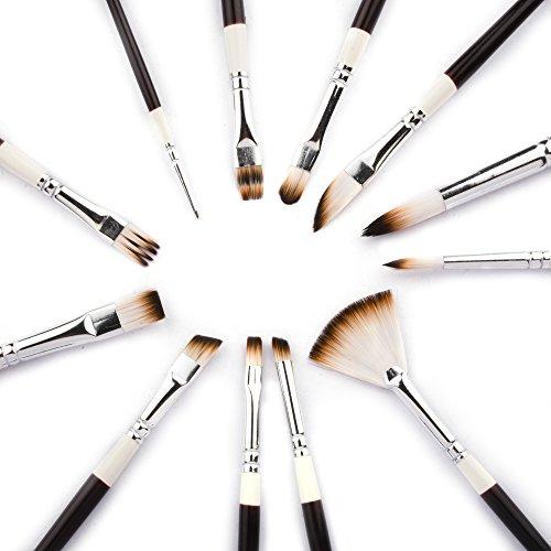 Brush Rake (Fabart 12 Piece Artist Paint Brush Set - Round, Flat, Comb, Dagger, Deerfoot, Angular, Filbert, Rake)
