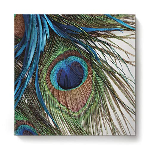 Square Canvas Wall Art Oil Painting for Bedroom Living Room Home Decor,Green 3D Feather of Peacock Office Artworks,Stretched by Wooden Frame,Ready to Hang,12 x 12 Inch