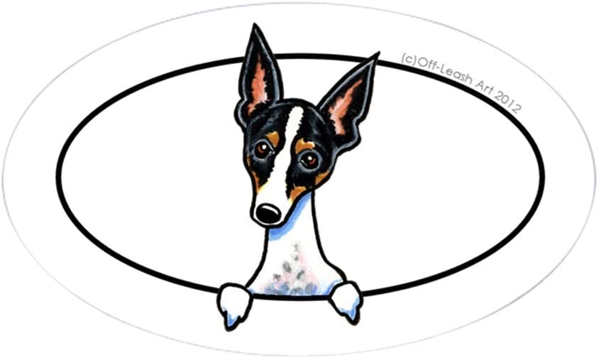 CafePress Rat Terrier Peeking Bumper Sticker Oval Bumper Sticker, Euro Oval Car Decal