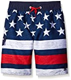 Quiksilver Big Boys' 4th of Ju-Luau Board Short, Navy Blazer, Large