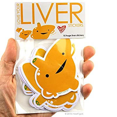 I Heart Guts Love Your Liver Stickers - 15 Liver Stickers - Vinyl Sticker Pack: Home & Kitchen