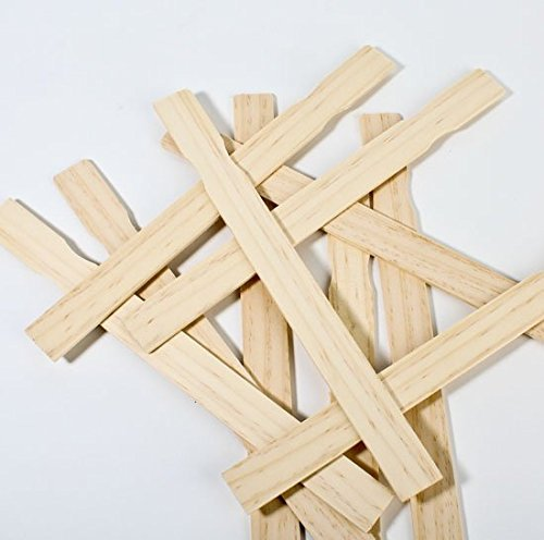 Woodman Crafts Paint Sticks - 12