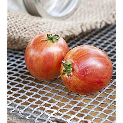 Pink Bumblebee Heirloom Tomato Premium Seed Packet : Garden & Outdoor